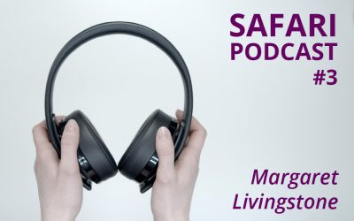 Safari Podcast #3 Margaret Livingstone